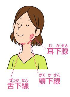 画像 : 困った時にすぐ出来る「口臭」の予防法まとめ - NAVER まとめ